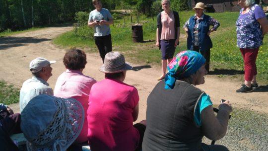 Садоводство «Падунский»: выживет или умрет?